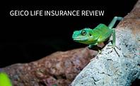 life insurance geico, geico life insurance review