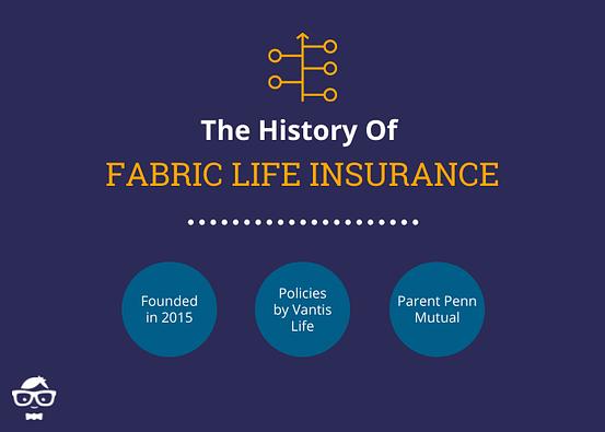 History of Fabric Life Insurance